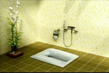 iranian toilet